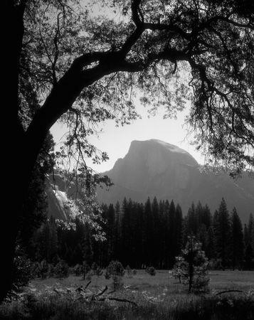 Half Dome in Yosemite Valley, Yosemite National Park, California. Stock Photo - 1200815