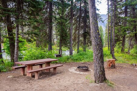 A nice creek side campsite in the Payette National Forest Imagens
