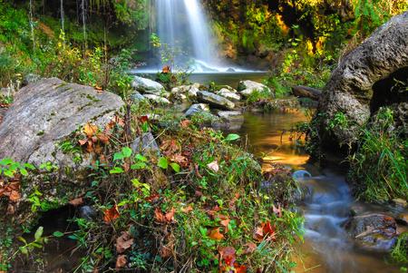 Waterfall, Shenandoah Valley, Virginia