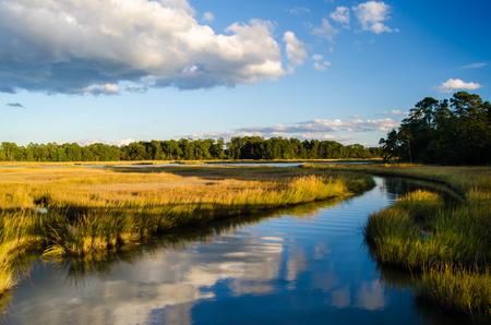 A peaceful creek flows through a marsh in Smithfield, Virginia.