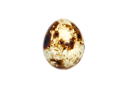 Quail spotted egg, isolated on a white background