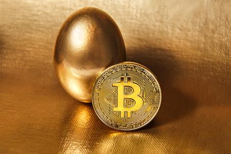 Golden bitcoin with golden egg on golden fleece or canvas. Money, enrichment and profit concept