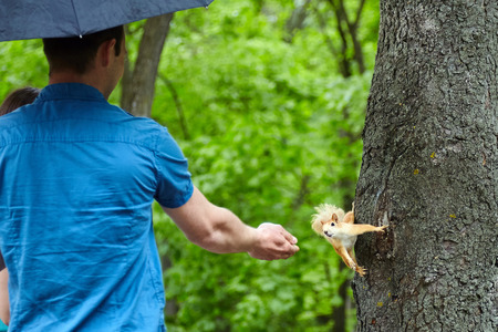 a man with an umbrella is feeding a squirrel in the park