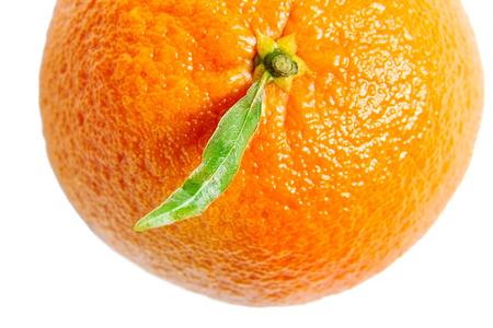 Mandarin, mandarine, tangerine citrus fruit isolated on white background. Top view