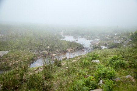 River among green hills in the fog. Foggy summer day. Nature of the Pyrenees. La Rhune mountain, Basque country, France