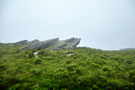 Rock, sharp stones on a green hill in the fog Stock Photo - 123902873