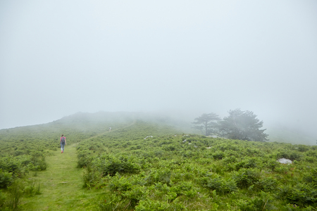 Hiking trail, people walking on the green hill in the fog Stock Photo - 123903122