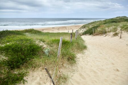 Sandy beach on the Bay of Biscay, landscape of the Atlantic coast of France. French Silver Coast. Pathway and mesh fencing with wooden posts and grass
