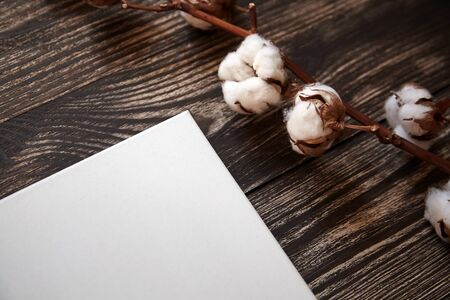 Artistic canvas and cotton plant. Natural white blank cotton canvas on brown wooden background