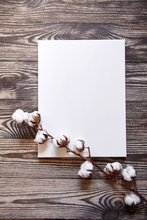Artistic canvas and cotton plant. Natural white blank cotton canvas on brown wooden background. Top view. Mockup