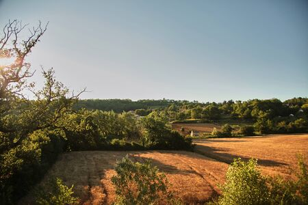 Agricultural fields at sunset, countryside landscape in the south of France at sunny summer evening