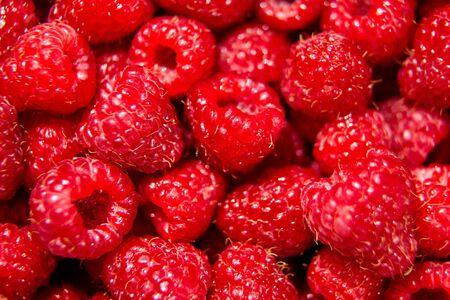 Many red raspberries background, heap of summer fresh ripe berries, closeup