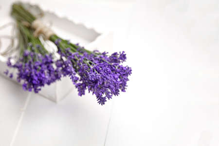 Aromatherapy - fresh natural lavender flowers bunches on white wooden background