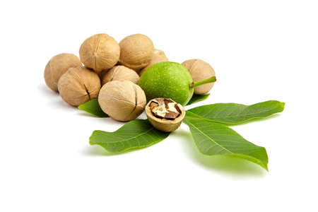 Whole walnuts heap, dry and green isolated on white background