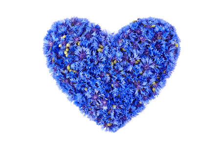 Floral composition. Blue fresh cornflower flowers heart isolated on white background. Greeting card design.