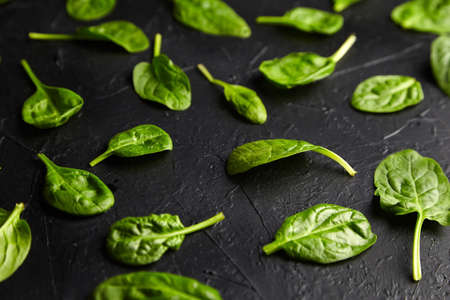 Spinach fresh green leaves on a black background. Healthy food, salad herbal ingredient Banque d'images