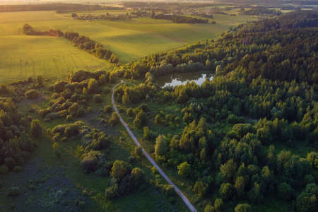 Aerial view - summer landscape, field with forest and lake during sunset light. European nature.