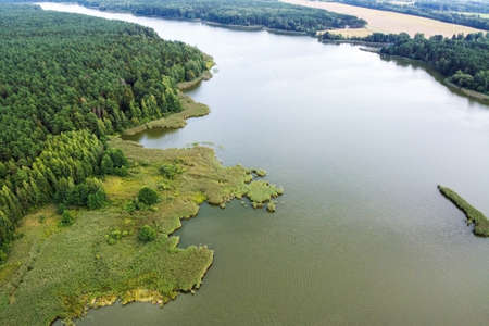 Aerial view of river and forest, summer landscape in Belarus, Europe