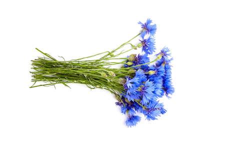 Bunch of fresh blue cornflowers isolated on white background