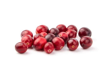 cranberries isolated on white background. Heap of fresh red berries. Scattered autumn large cranberries