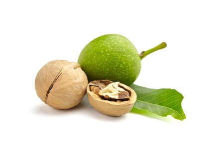 Walnuts - dry and unripe with green walnut tree leaves isolated on white background