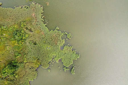 Summer landscape with lake, aerial view. Green grass island in river water