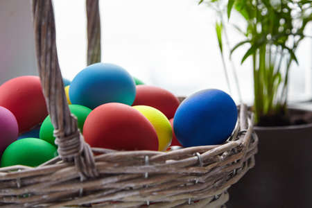 Basket with colorful Easter Eggs near window and blurred green leaves of houseplant on background. Easter (Resurrection) Sunday or Easter Day (Pascha). Decorated painted chicken eggs, selective focus