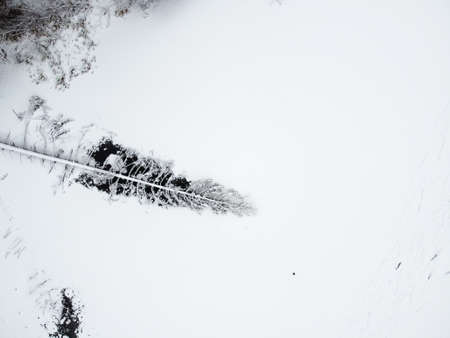 Winter forest with snowy trees, aerial view. Winter nature, aerial landscape with frozen river, trees covered white snow Stock fotó
