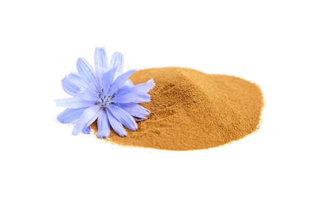 Chicory root powder with blue flower isolated on white background. Heap of chicory coffee, organic food additive