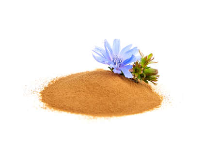 Chicory root powder with blue flower isolated on white background. Heap of chicory coffee, organic food additive Stock fotó