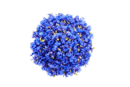Medicinal herbs - fresh wild cornflowers heads isolated on white background, top view