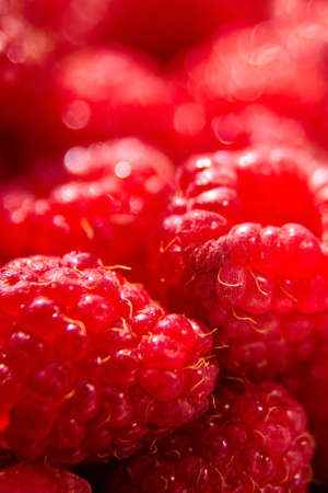 red raspberry background, fresh juicy berries, raw food, closeup, selective focus Stock fotó