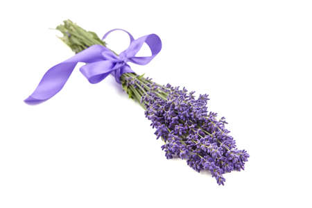 Lavender flowers bouquet with purple ribbon isolated on white background. Fresh aroma flowers Standard-Bild