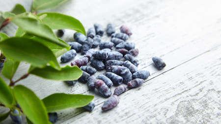 Honeyberry (Lonicera caerulea) on gray wooden background. Heap of sweetberry honeysuckle (Haskap berry) with fresh green leaves