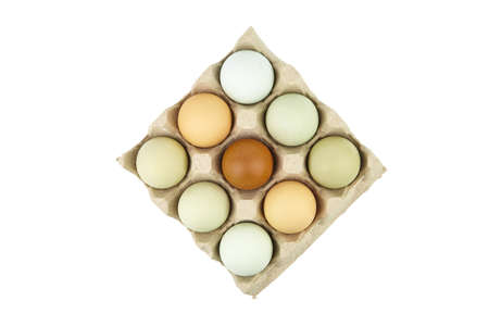 Chicken eggs in tray isolated on white background. Nine eggs in cardboard holder, top view