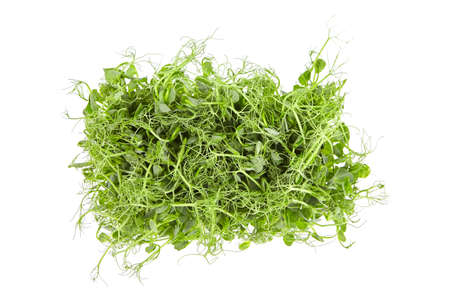 Fresh microgreens isolated on white background. Young pea shoots, healthy food, top view