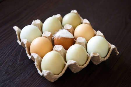Chicken eggs with feather in tray on wooden table. Nine eggs in cardboard holder on brown table 免版税图像