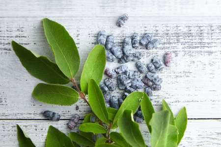 Honeyberry (Lonicera caerulea) on gray wooden background, top view. Heap of sweetberry honeysuckle (Haskap berry) with fresh green leaves 免版税图像
