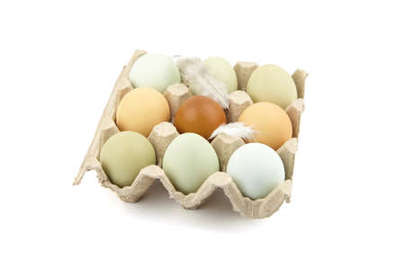 Chicken eggs in tray with feather isolated on white background. Nine eggs in cardboard holder