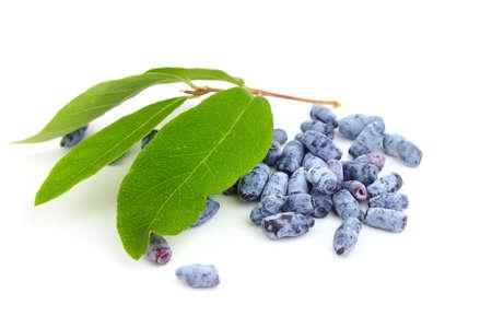 Honeyberry (Lonicera caerulea) isolated on white background. Heap of sweetberry honeysuckle (Haskap berry) with fresh green leaves
