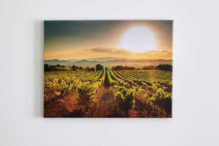 Canvas photo print, interior decor. Landscape photography hanging on white wall. Picture with vineyard