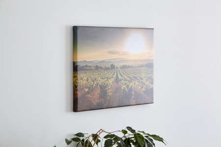 Canvas photo print with gallery wrap and green leaves of houseplant, interior decor. Landscape photography hanging on white wall