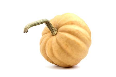 Pumpkin isolated on white background. Single whole orange color ribbed pumkin