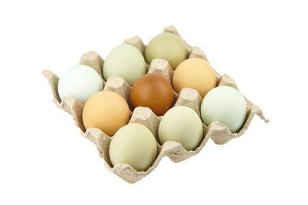 Chicken eggs in tray isolated on white background. Nine eggs in cardboard holder 免版税图像