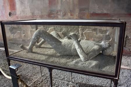 petrified: Pompei - Petrified body