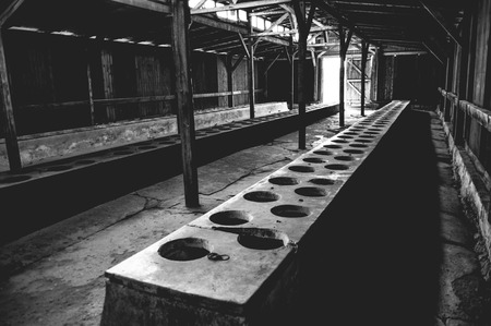 latrine: Auschwitz II - Birkenau latrine barracks consisting of very primitive facilities