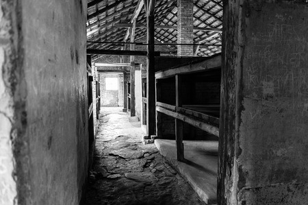 death camp: Auschwitz II - Birkenau, aspect of beds at the interior of a brick walled barracks