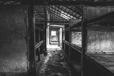 barracks: Auschwitz II - Birkenau, aspect of beds at the interior of a brick walled barracks