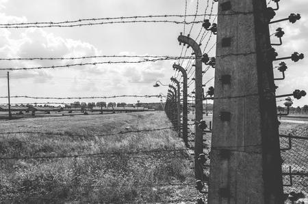 auschwitz: Auschwitz II - Birkenau, aspect of the electrified barbed wire fence