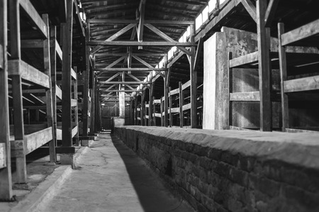 supposed: Auschwitz II - Birkenau wooden barracks. The long duct along the center of the floor was supposed to heat the whole barracks from the stoves at either end. Editorial